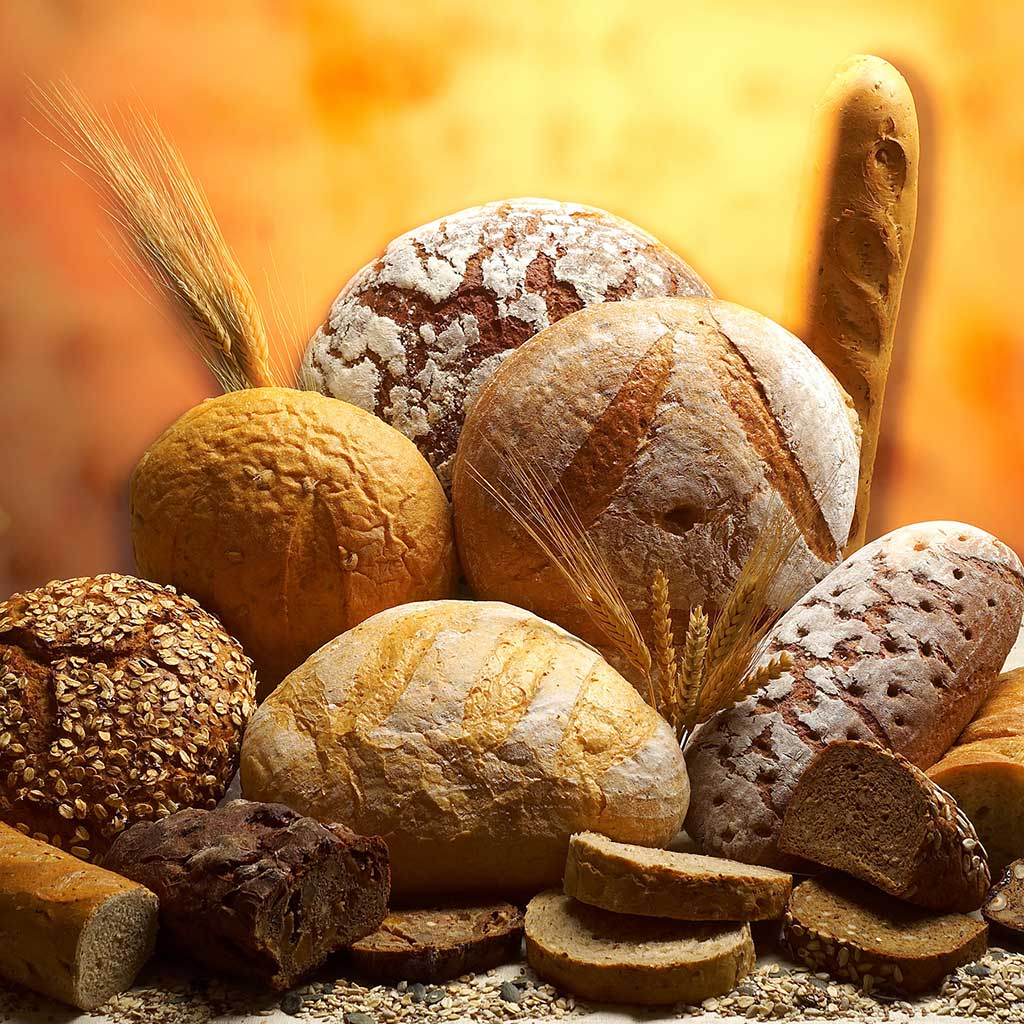 中古製パン機械 株式会社エルファ